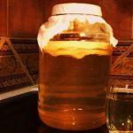 Чайный гриб - природный антисептик и кладезь витаминов