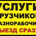 sankt-peterburg-gruzchiki_pereezdy_vyvoz_musora_raznorabochie_v_sankt-peterburge_2349