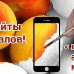 sozdanie_i_prodvizhenie_saytov_2042